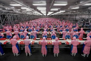gursky1chicken workers pink