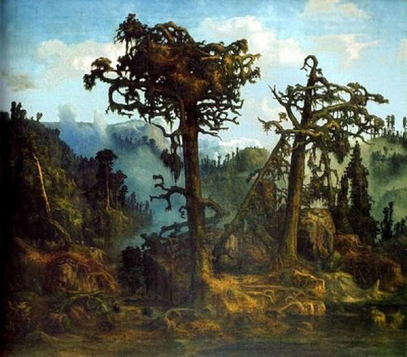 herteveign trees