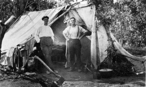 1915_GlareJohnHenry_TerryTe