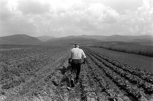 Peter Kayafas, photography. Telega, Romania 2005