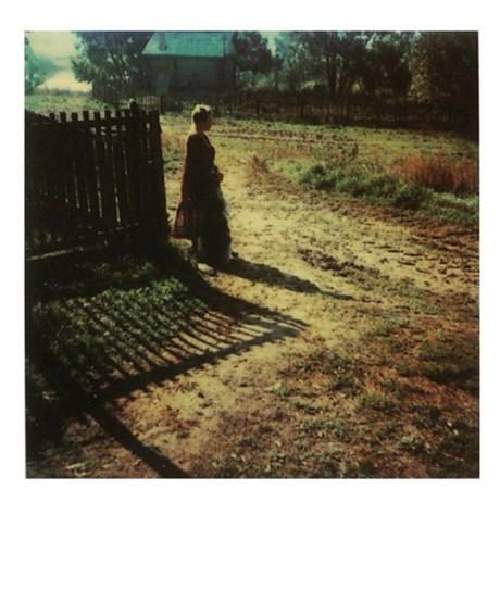 Andrei Tarkovsky. polaroid photograph.