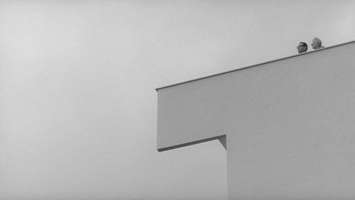 L'Eclisse (1962), Michelangelo Antonioni, dr.