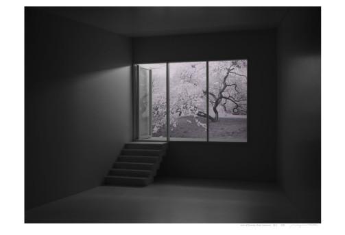 Mayumi Terada, photography.