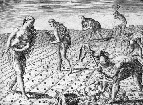 """Indians Planting"", engraving, Theodore de Bry, 1591"