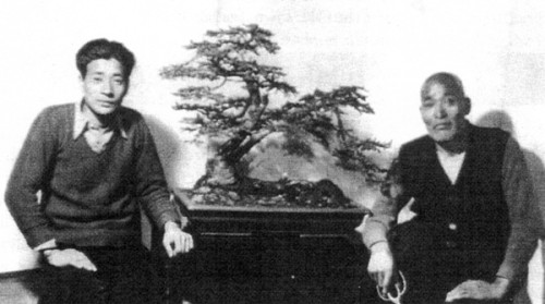 Saburo and Tomekichi Kato with Ezo Spruce. (Photo from Thomas S. Elias).