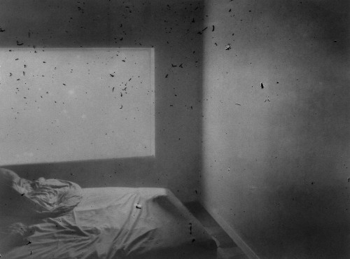 Daisuke Yokoto, photography.