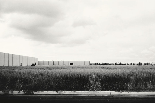 Lewis Baltz, photography.