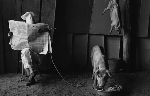 Pedro Luis Raota, photography.