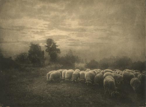 Leonard Misonne, photography. (1920s).