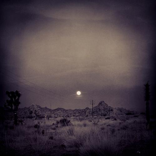 Nancy Baron, photography.