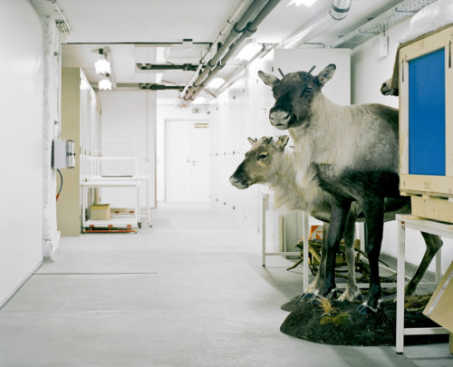 Klaus Pichler, photography.