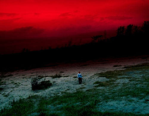 Lieko Shiga, photography.